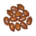 Castor Bean ( Tukhm-e-Arandi )