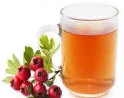 Hawthorn Tea ( Kateeli Ki Chai )