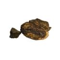 Indian Tree Turmeric ( Rasoot India )