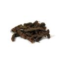 Knotgrass ( Anjbar )