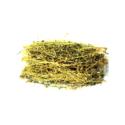 Phyllanthus ( Hazar Dana )