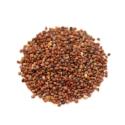 Radish Seeds ( Tukhm-e-Mooli )