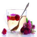 Red Clover Tea ( Lal Tarfeel Ki Chai )
