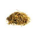Spleenwort ( Chitrak )
