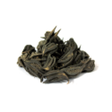 Stinging Nettle ( Bicho Phal )