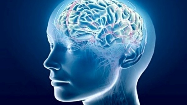Cephalic, Head Related Problems and Herbal Remedies